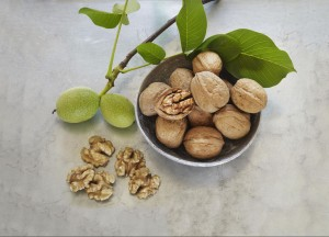 Nueces de California