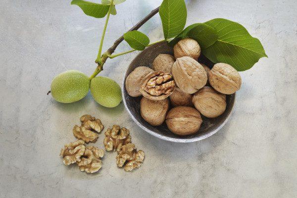 Las nueces contra el cáncer de colon 2