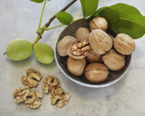 las-nueces-contra-el-cancer-de-colon-2